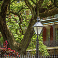 Iconic New Orleans by Jean Noren