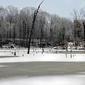 Icy Landscape by Angela Murdock