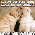 I'll Love You Even When We're Old And Wrinkly by Funny ny