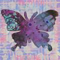 Imagine Butterfly by Lisa Crisman