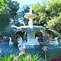 Impressionist Forsyth Park Fountain by Amy Dundon