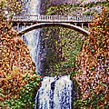 Impressions Of Multnomah Falls by Glenn McCarthy Art and Photography