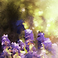 Impressions Of Muscari by Lois Bryan