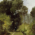 In The Woods, 1864 by Camille Pissarro