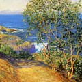 Indian Tobacco Trees La Jolla 1916 by Guy Rose