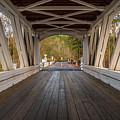 Inside Larwood Bridge by Matthew Irvin
