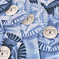 Intercollegiate Ribbons by JAMART Photography