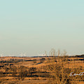 Iowa Winter Crop by Edward Peterson