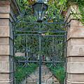 Iron Sword Gates - Charleston by Dale Powell