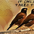 It Only Takes Two by Rusty Gouveia
