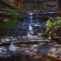 Jackson Falls by Susan Rissi Tregoning