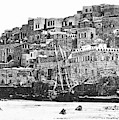 Jaffa 1886 by Munir Alawi