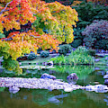 Japanese Garden by Mary Capriole