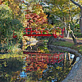Japanese Garden Red Bridge Reflection by Gill Billington