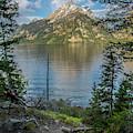 Jenny Lake Morning by Matthew Irvin