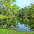 Jessamine Pond by Bill Barber