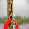 Jim Bouys Pole by Jean OKeeffe Macro Abundance Art