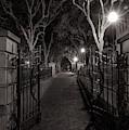 Joe Riley Waterfront Park At Night by Dan Sproul