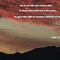 John 12 by Robert Bales