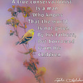 John Audubon Quote by Dan Sproul