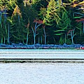 Jordan Pond Kayak by Patti Whitten