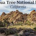 Joshua Tree National Park Box Canyon, California by G Matthew Laughton