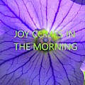 Joy Comes In The Morning by Lisa Wooten