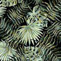 Jungle Dark Tropical Leaves by Menega Sabidussi