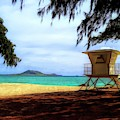 Kailua Beach by Cornelia DeDona