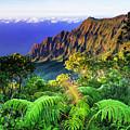 Kalalau Valley And The Na Pali Coast by Russ Bishop