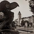 Kansas University Skyline Along Jayhawk Boulevard - Sepia Edition by Gregory Ballos