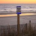 Keep Off Dunes by Cynthia Guinn