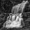 Kent Falls State Park Ct Bw by Susan Candelario