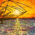 Kerala Sunset by Joel Tesch