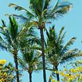Kihei Palms And Tabebuia Chrysotricha Gold Tree by Sharon Mau