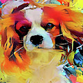 King Charles Spaniel On The Move by Peggy Collins