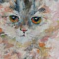 Kitten Portrait by Ginette Callaway