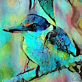 Kookaburra Blues by Chris Armytage