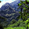 Ko'olau Peak by Cornelia DeDona