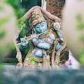 Krishna Garden by Tim Gainey