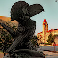 Ku Jayhawk And Lawrence Kansas Campus Architecture by Gregory Ballos