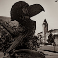 Ku Jayhawk And Lawrence Kansas Campus Architecture Sepia by Gregory Ballos