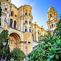 Catedral De Malaga II by Borja Robles