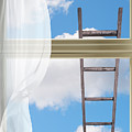 Ladder Against Window Pane by Amanda Elwell