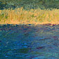 Lake Michigan Shoreline With Dunes And Grasses by Michelle Calkins