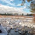 Lake Oswego After The Snow  by Kristia Adams