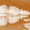 Lake Reflections In Brown by Marian Bell