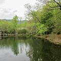 Lake Susan At Black Mountain North Carolina by Roberta Byram