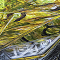 Lamborghini Fall Reflections by Keith Smith