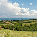 Landscape With Orchards by Dejan Jekic